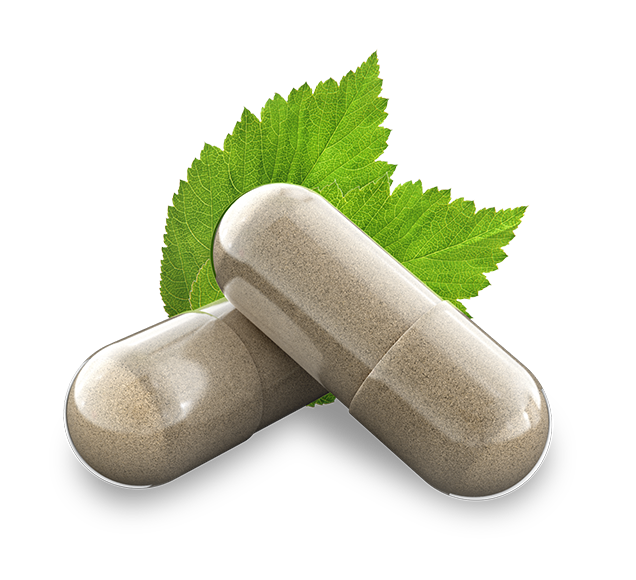Productos orgánicos para la erección sin receta.